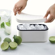 Ice Box - Isform med forvaring